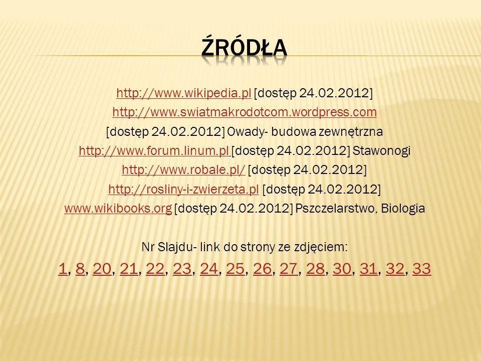 Źródła http://www.wikipedia.pl [dostęp 24.02.2012] http://www.swiatmakrodotcom.wordpress.com. [dostęp 24.02.2012] Owady- budowa zewnętrzna.